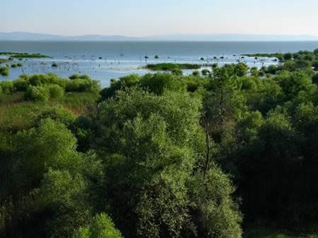Balıkesir-Doğal-Güzellikleri-Kuş-Cenneti-Milli-Parkı-1